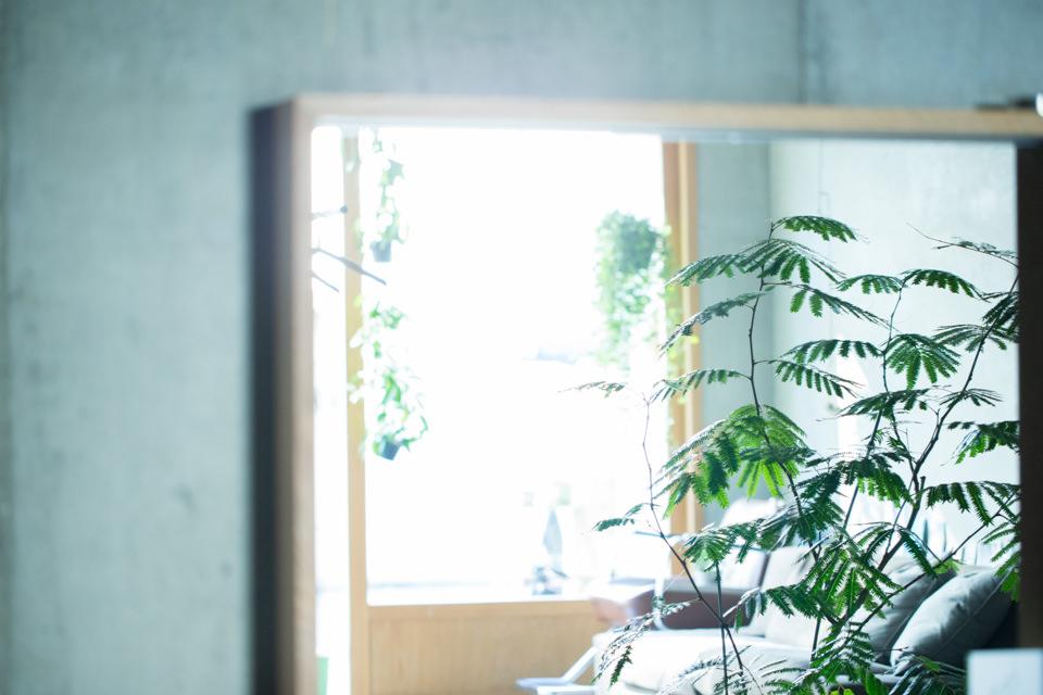 薬院 美容室 &loosen(アンドルーセン) 店内イメージ28